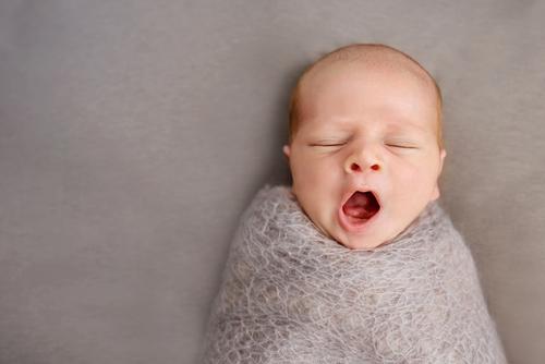 日本と世界の出産事情と卵子を育てる3つのポイント